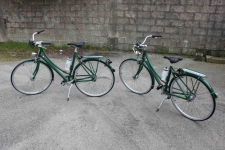 2 Vélos Specialised Dayly Deluxe Green