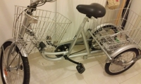 Tricycle Orbita Gris